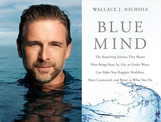 Commander le livre Blue Mind