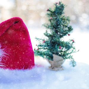 2000€ d'amende pour une histoire de bonnets de Noël