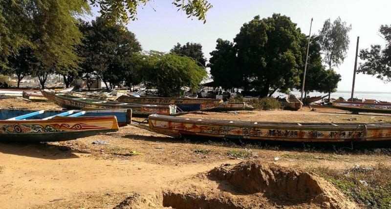 Afrique : une baisse considérable de l'argent envoyé par les migrants